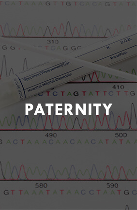 Paternity lawyers in Wisconsin